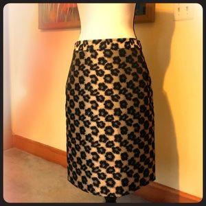 Beautiful Ann Taylor Skirt